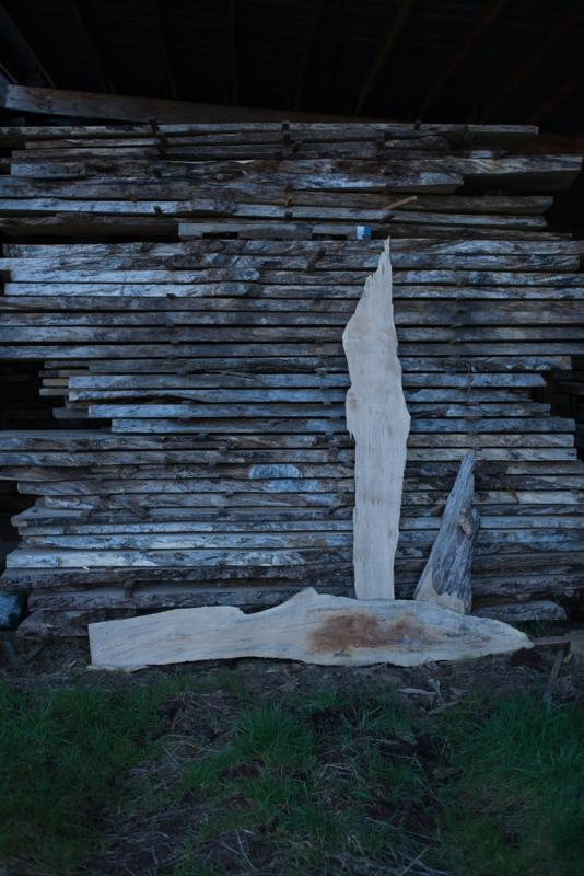 A Trip to the WoodShed